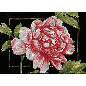 LanArte Pink Rose On Aida Counted Cross Stitch Kit-13
