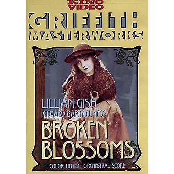 Broken Blossoms [DVD] USA importeren