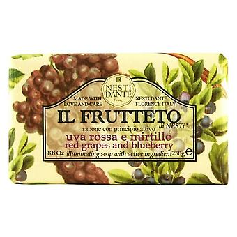 Nesti Dante Il Frutteto Blueberry And Red Grapes Jabón 250 gr