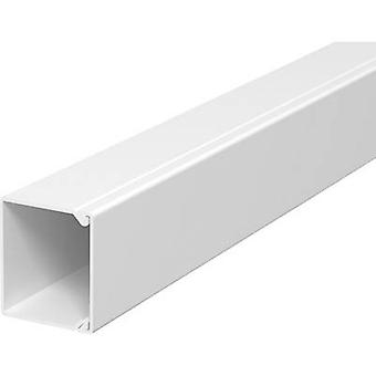 OBO Bettermann 6189547 Cable duct (L x W x H) 2000 x 40 x 40 mm 1 pc(s) Pure white