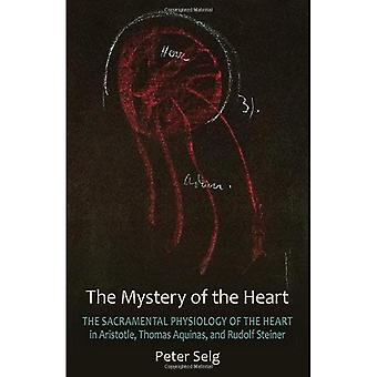 The Mystery of the Heart: Studies on the Sacramental Physiology of the Heart. Aristotle | Thomas Aquinas | Rudolf Steiner