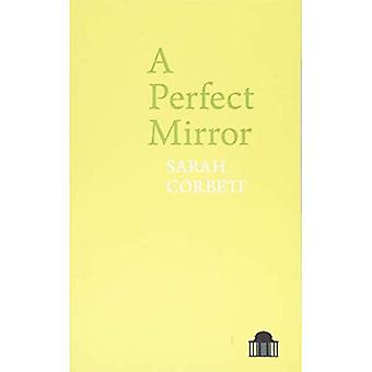 A Perfect Mirror (Pavilion Poetry)