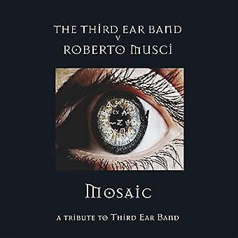 Roberto Musci & Third Ear Band - importación de USA de mosaico [CD]