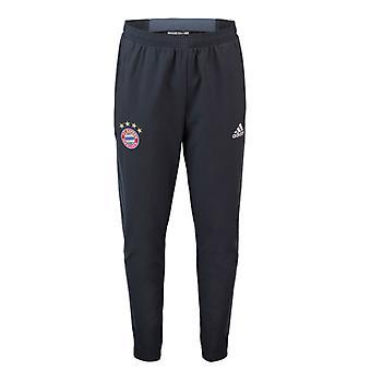 2018-2019 Bayern Munich Adidas UCL Training Pants (Raw Steel)