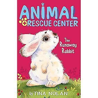 The Runaway Rabbit (Animal Rescue Center)
