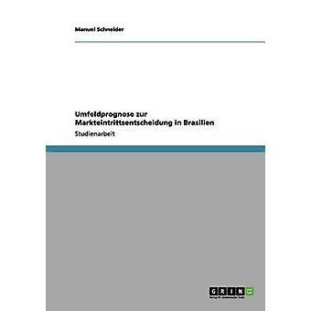 Umfeldprognose zur Markteintrittsentscheidung in Brasilien by Schneider & Manuel
