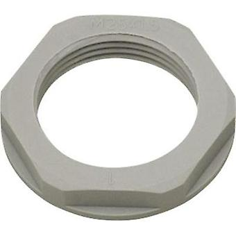 Locknut with flange M20 Polyamide Silver-grey (RAL 7001) Helukabel KMK-PA 94262 1 pc(s)