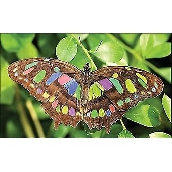 Collection D'art Diamond Embroidery/Printed/Gem Kit 27x38cm-Bright Butterfly DE071