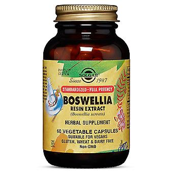 Solgar Standardised - Full Potency Boswellia Resin Extract Vegetable Capsules, 60