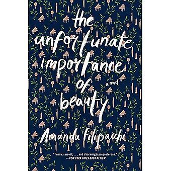 Het ongelukkige belang van schoonheid: een roman