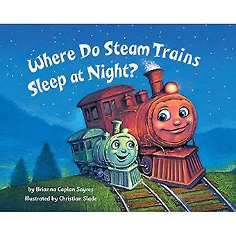 Där ska ånga tåg sova om nätterna? [Styrelse bok]