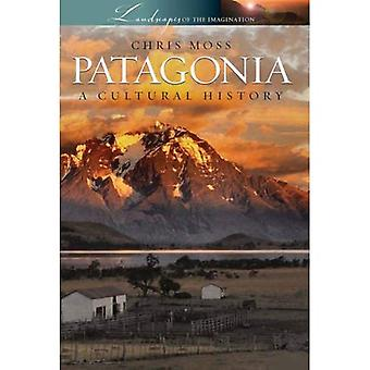 Patagonia: A Cultural History (Landscapes of the Imagination): A Cultural History (Landscapes of the Imagination)