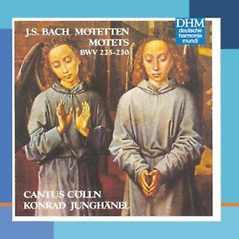 Bach - Bach: Motets [CD] USA import