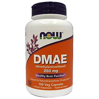 Now Foods Dmae 250 mg 100 Capsulas