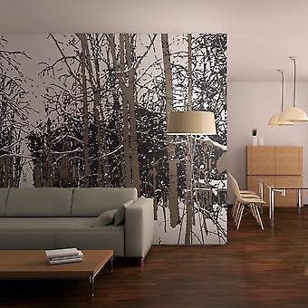 Wallpaper - trees - autumn