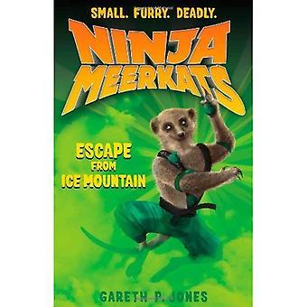 Ninja e scimmie (#3): Fuga dalla montagna di ghiaccio