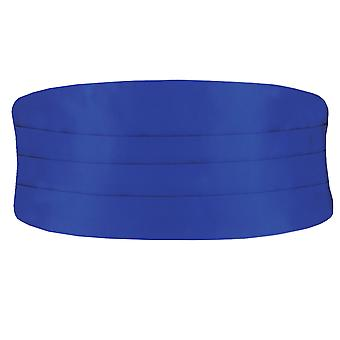 Dobell Boys Royal Blue Cummerbund Ajustable Waist Tuxedo Wedding Accessory