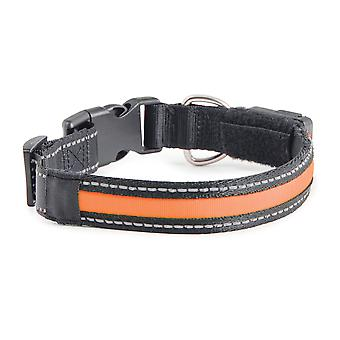 Usb Rechargeable Night Time Safety Collar Large 46-66cm