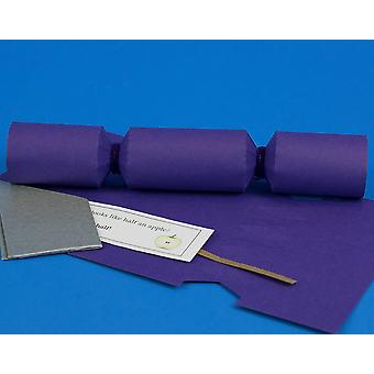 Single MINI Rich Purple Make & Fill Your Own Cracker Making Craft Kit