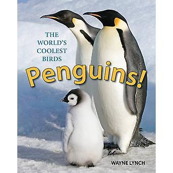 Pingviner! -Världens coolaste fåglar av Wayne Lynch - 9781770858664 B