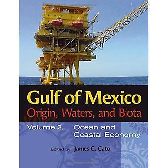 Gulf of Mexico Origin, Waters, and Biota: Ocean and Coastal Economy v. 2 (Harte Research Institute for Gulf of Mexico Studies Series)