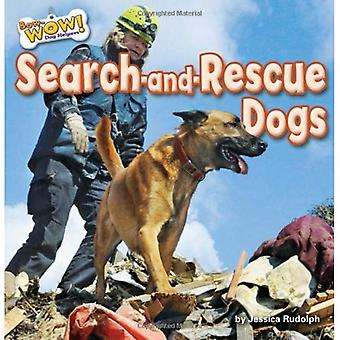Search-And-Rescue Dogs (Bow-Wow! Dog Helpers)