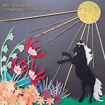 Big Business - kommando din vejr [Vinyl] USA importerer