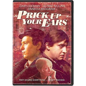 Prick Up Your Ears [DVD] USA importieren