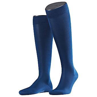 Falke Tiago calzettoni alti - blu reale