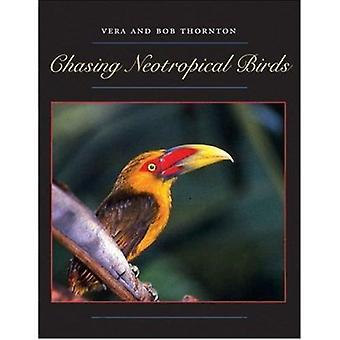 Chasing Neotropical Birds by Bob Thornton - Vera Thornton - 978029270