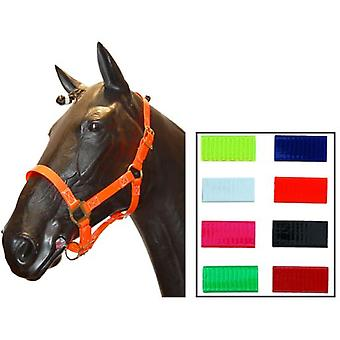 Biothane Cuadra Red Cob Bridle (Horses , Horse riding equipment , Head stall , Halters)