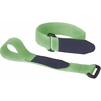 Hook-and-loop tape with strap Hook and loop pad (L x W) 290 mm x 25 mm Green Fastech 688-656 2 pc(s)