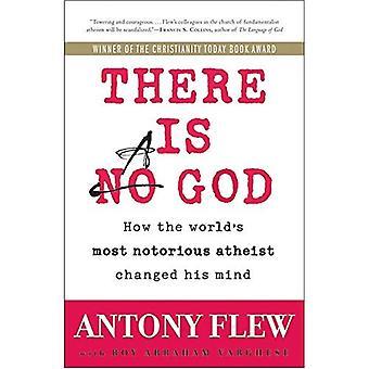 Er is een God: hoe de's werelds meest beruchte Atheist veranderd zijn mening
