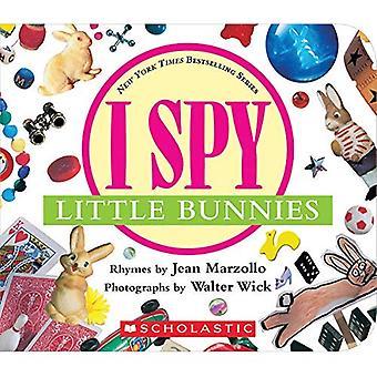 I Spy Little Bunnies (I Spy Series)