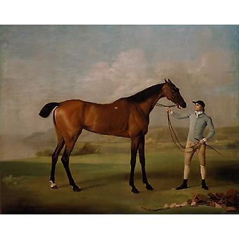 Molly Longlegs with Jockey,George Stubbs,50x40cm