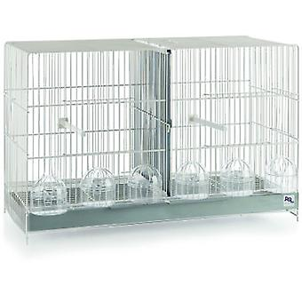 RSL Cria Cage White (Birds , Bird Cages , Small Birds)