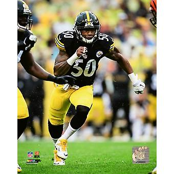Ryan Shazier 2016 Action Photo Print (8 x 10)