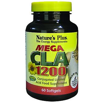 Natures Plus Mega CLA 1200, 60 Softgels