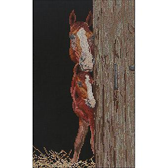 Horse And Foal On Aida Counted Cross Stitch Kit-6