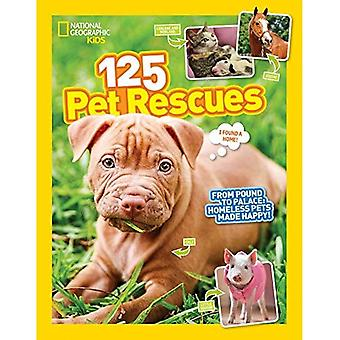 Rescate mascotas 125: de libra al Palacio: animales sin hogar hecho feliz (125) (125)