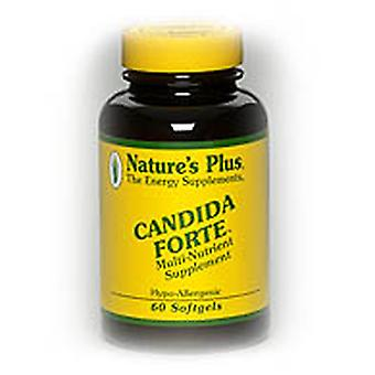 Natures Plus CANDIDA FORTE SOFTGELS 60