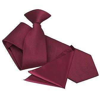 Bourgondische solide selectievakje Clip op slanke Tie & zak plein Set