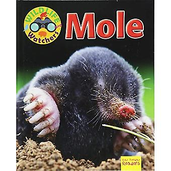 Mole (Wildlife Watchers)