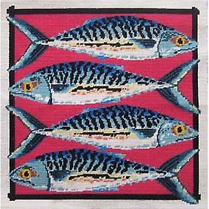 طقم الإبرة سمك الإسقمري