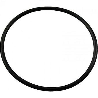 Pentair 192323 O-Ring for Pool or Spa DE Filter and Pump