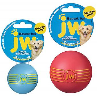 JW Pet iSqueak Rubber Ball Dog Toy, Large Size