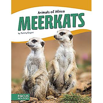 Meerkats by Tammy Gagne - 9781635172676 Book