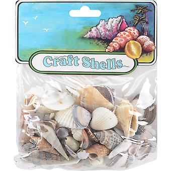 Sea Shell Mixes 25/Pkg-Small World  67112