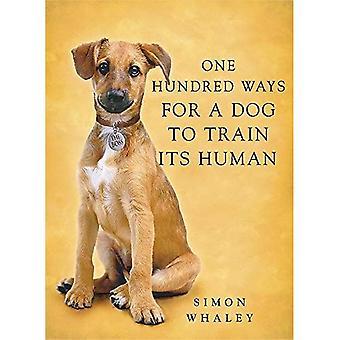 En hundra sätt för en hund att träna sin mänskliga