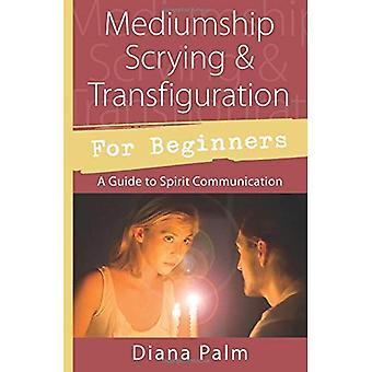Mediumschap Kristalkijken und Verklärung voor Beginners: A Guide to geest communicatie (Llewellyn voor Beginners)